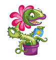 cartoon carnivorous plant with fly vector image