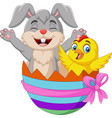 cartoon rabbit and baby chick inside an easter egg vector image vector image