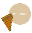 colored pan flute in hand-drawn style vector image