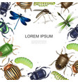realistic insects colorful template vector image vector image