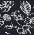 seamless pattern with hand drawn chalk impatiens vector image vector image