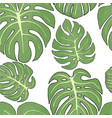 seamless pattern with tropical monstera leaves on vector image vector image