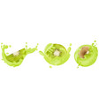 set of realistic kiwi with splashes vector image vector image