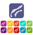 spiral bacteria icons set vector image vector image
