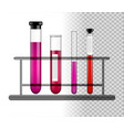 test tubes with liquid on a glass stand vector image