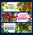 berry with leaf banner of wild and garden fruit vector image vector image