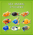 cute cartoon sea animals on sticker vector image vector image