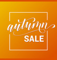 flyer for autumn sale or card vector image vector image