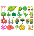 large set different plants on white background vector image