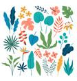 set flat tropical floral design elements vector image vector image