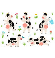 set with funny spotted cows standing sleeping vector image vector image