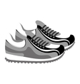 shoes tennis isolated icon vector image