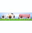 soccer balls in green grass close up on vector image vector image