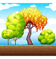 Trees in the park vector image vector image