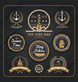 Vintage nautical labels set on dark wood vector image vector image