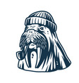walrus in a sailor cap with smoking pipe vector image vector image