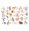 cute animals alphabet for kids education funny vector image vector image
