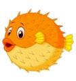 Cute puffer fish cartoon vector image vector image