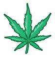 marijuana leaf isolated on white background vector image vector image