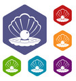 pearl in a sea shell icons set hexagon vector image vector image