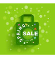Shopping bag spring sale background vector image