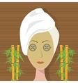 spa woman towel facial mask care bamboo vector image