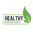 healthy natural green leaves frame white backgroun vector image