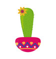 cactus and flower in pot decoration cinco de mayo vector image