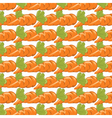 Carrots pattern isolated vector image