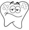 Cartoon tooth with bandages vector image vector image