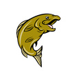 cartoon trout fish jumping side vector image vector image