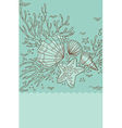 sea shell and coral vector image vector image