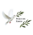 White dove peace flying