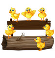 wooden sign with six chicks vector image vector image