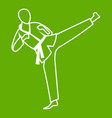 wushu master icon green vector image