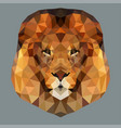 lion head low vector image