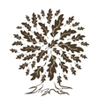 brown oak tree silhouette vector image vector image