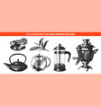 engraved style tea drink collection for posters vector image