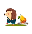 Hedgehog Carrying a Pear in Barrow vector image vector image