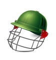 realistic 3d cricket helmet for goalie vector image vector image