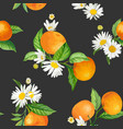 seamless floral mandarin pattern citrus tropic vector image vector image