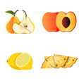 set yellow fruits whole and slice fruit vector image vector image