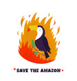 amazonian forest in fire sloth in flame vector image