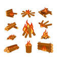isolated of campfire logs burning vector image vector image