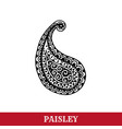 paisley motifs ink pen isolated vector image