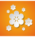 paper flowers on the orange background vector image vector image