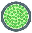 road trees circle vector image