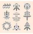 Set of the sea-buckthorn logos vector image vector image