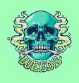 weed skull smoke vector image vector image