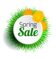 round spring banner with grass and dandelions vector image